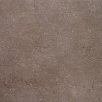 SG610500R Дайсен коричневый обрезной 60х60 - фото 18316
